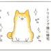 【柴犬4コマ】柴犬まるさんのトリミングは毎度のことこんな感じって話