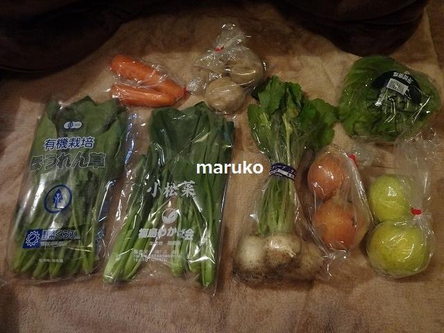 有機食材宅配のパイオニア「大地宅配 お試しセット」が届きました!980円でこの量の有機野菜は安い!