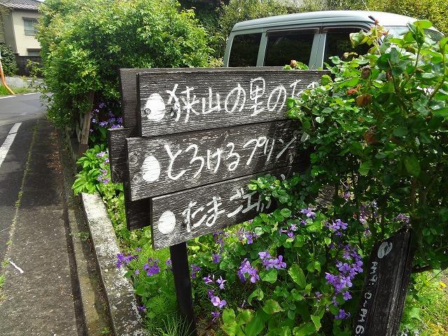箱根ヶ崎で美味しいスイーツ!たまご工房 うえのの超濃厚卵プリンが美味すぎた!