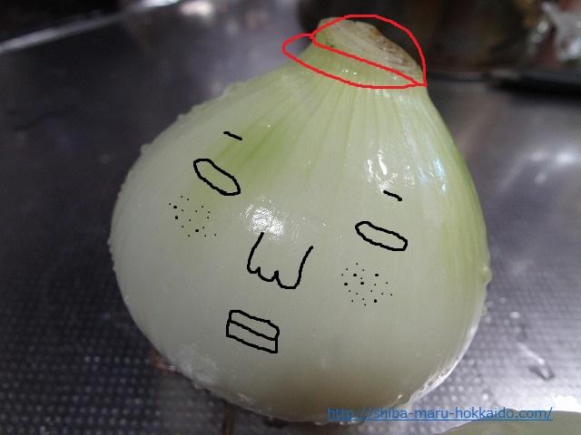 超特大新玉ねぎをいただいたので丸ごと料理をフィスラー圧力鍋で作ってみた