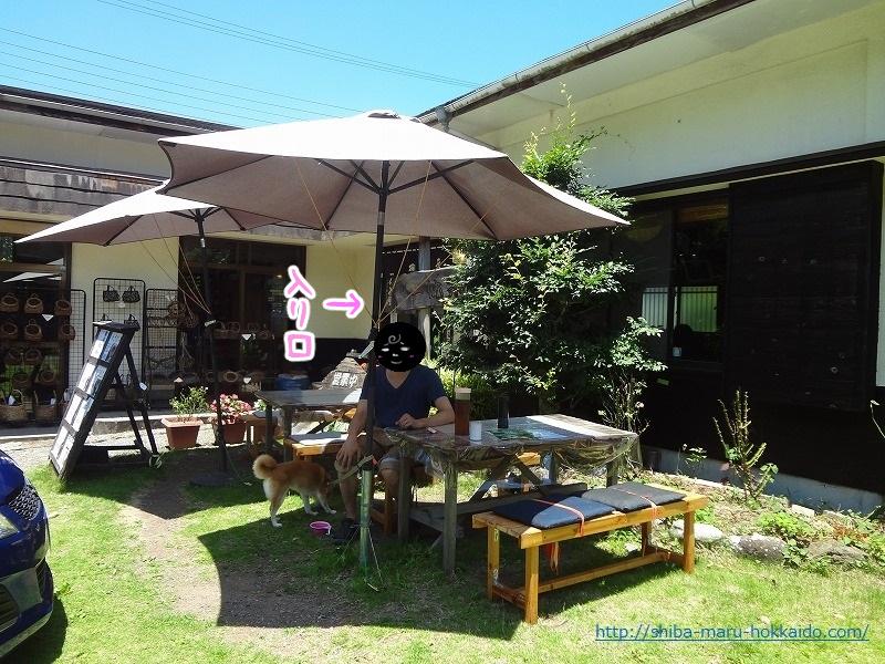 河津七滝で柴犬まるとわさび丼を食べる!「一休茶屋」にいってきました!