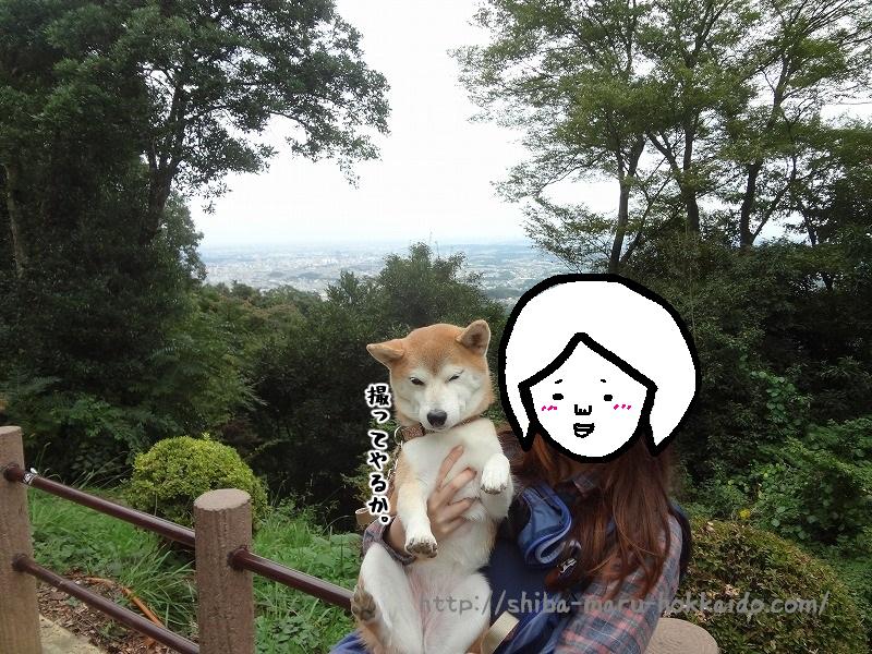柴犬まると高尾山のリフトに乗ってきました!酒まんじゅうと団子うま!