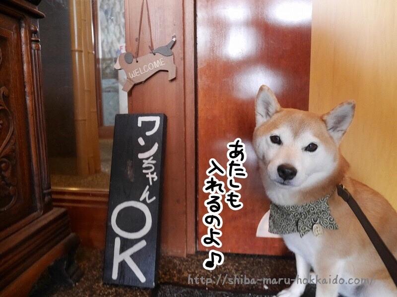 信州白馬そば処呑者屋(のんじゃえ)に柴犬まるといってきました!