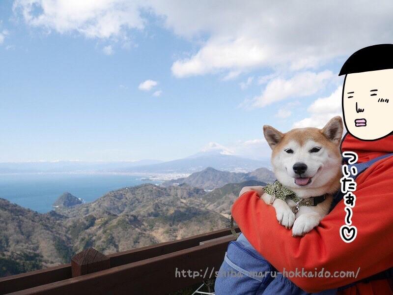 柴犬まると伊豆の国パノラマパーク「富士見テラス」にいってきました!