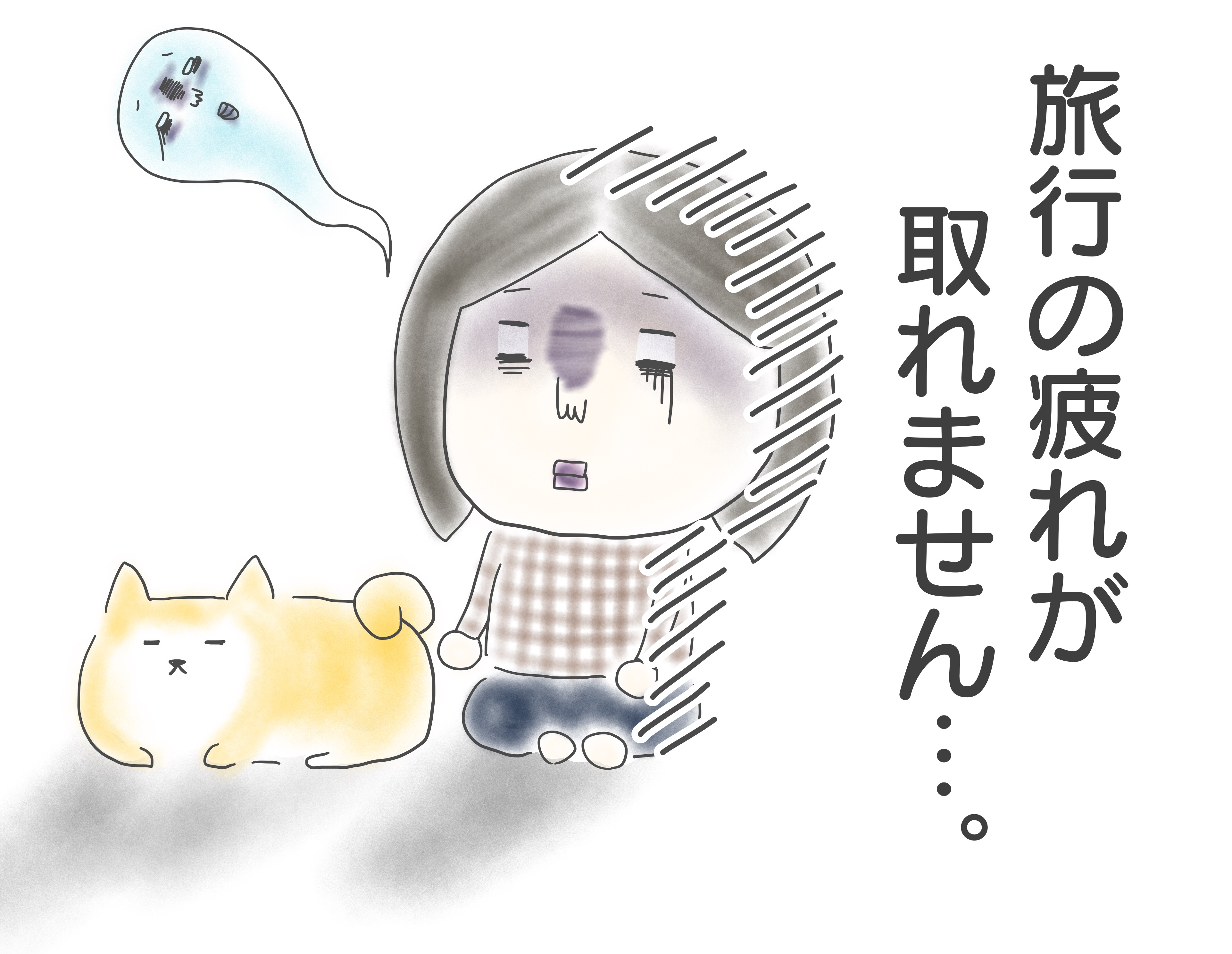 柴犬まるさんとの箱根旅行から帰ってきました~!
