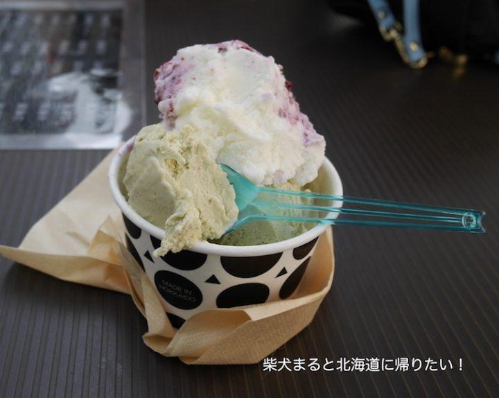 札幌大通りで期間限定!真夏のジェラート祭りに行ってきました!