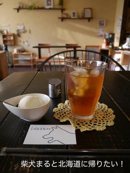柴犬好きなら行くべき!?札幌「シバキチカフェ」に行ってきました!