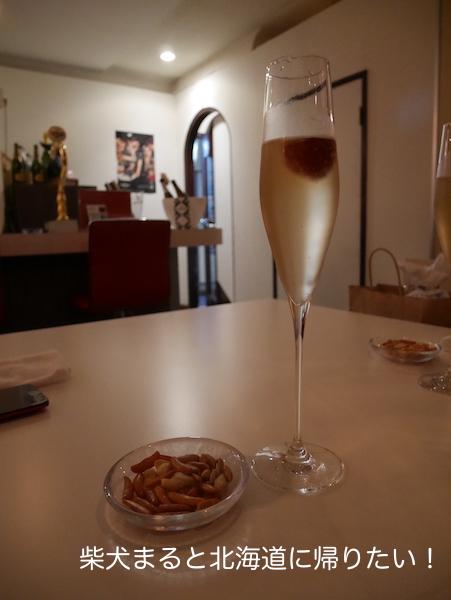 店内ペット可!北海道初のスパークリングワイン専門店に行って来ました!