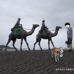 柴犬まると貝が食べたい!「御宿海女ダイニング浜焼きKAZU」に行ってきました!