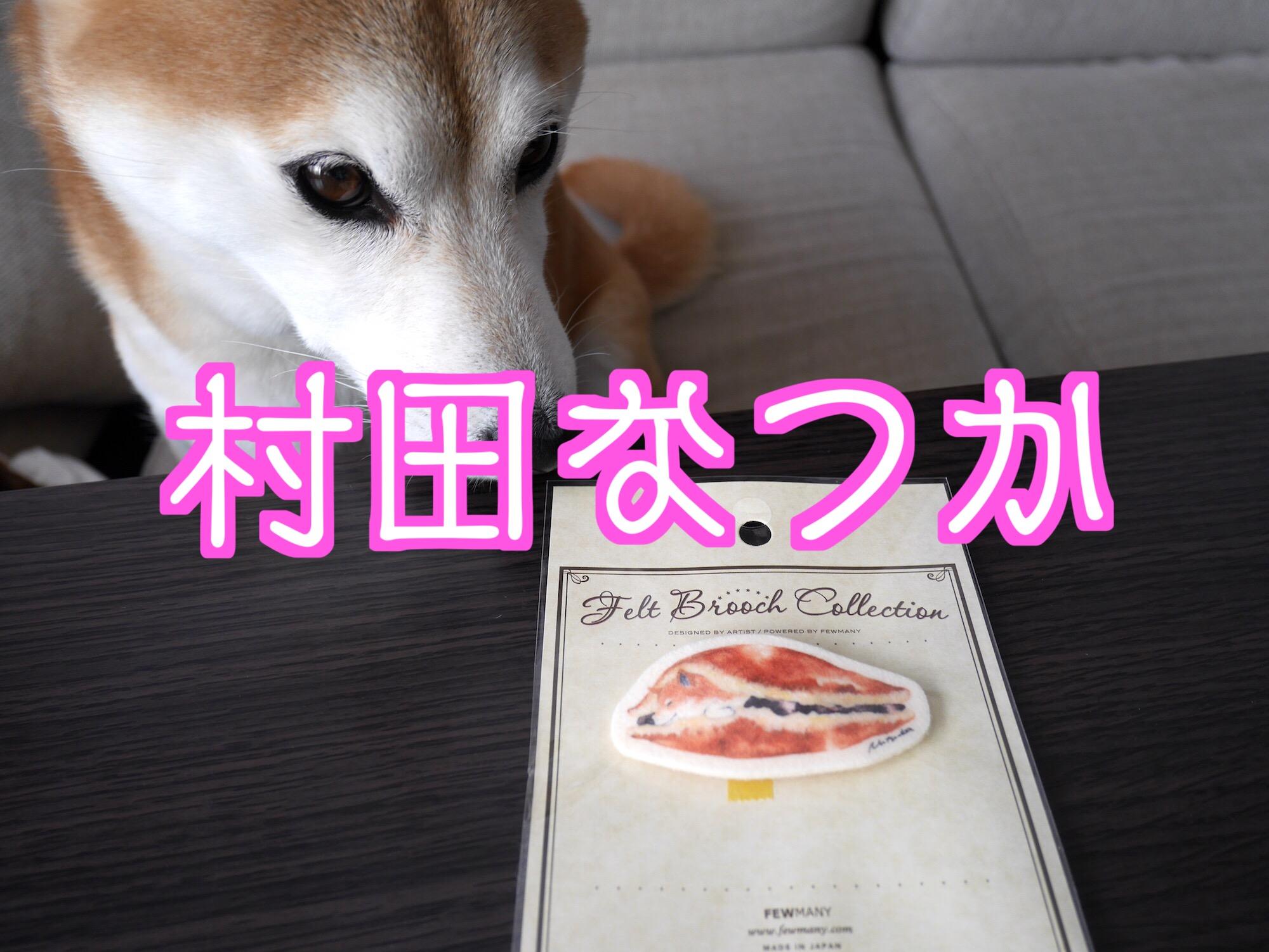 村田なつかさんの描く柴犬が可愛すぎるのでフエルトブローチを買ってみた!