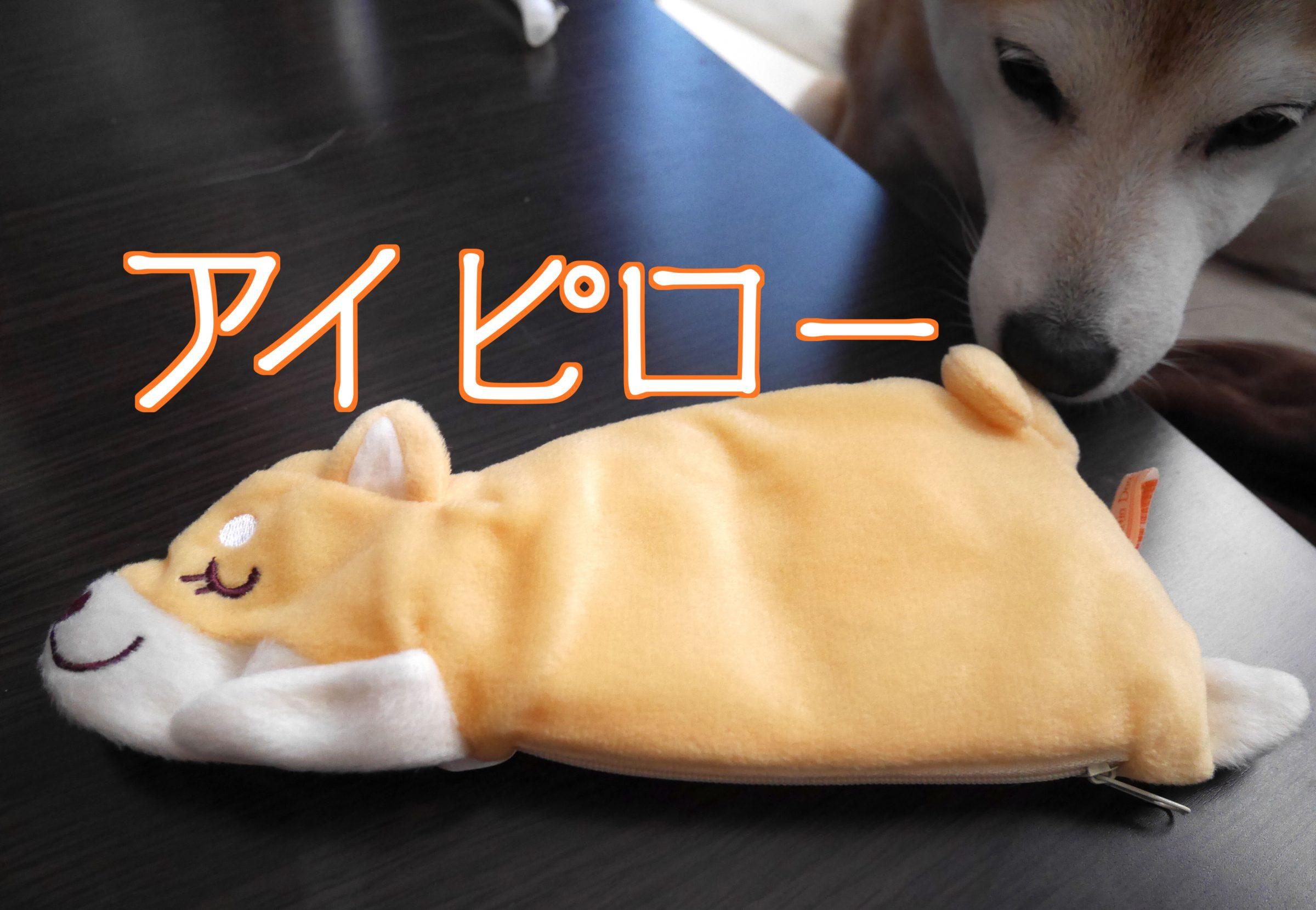 柴犬のアイピローが可愛すぎたので即買いしたので自慢します!