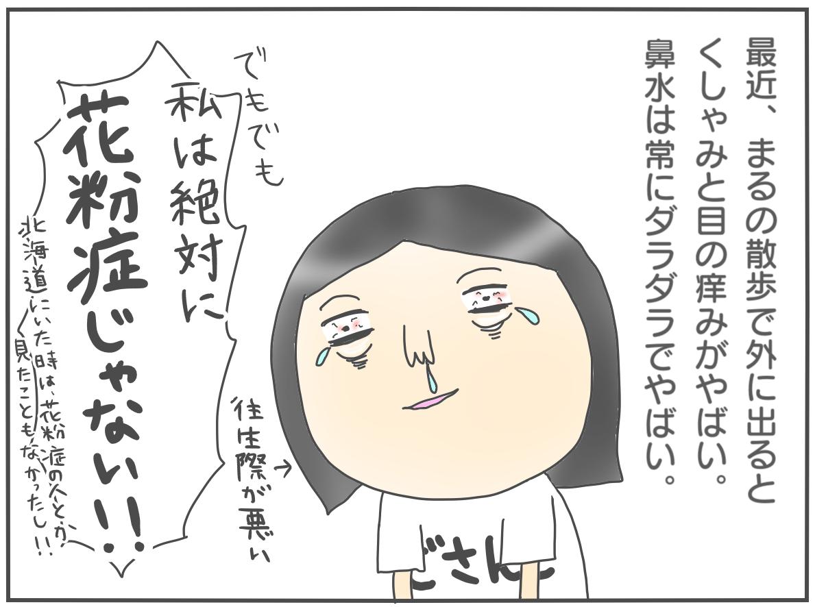 ①道産子の私が東京に住んで花粉症になったお話〜診断編〜
