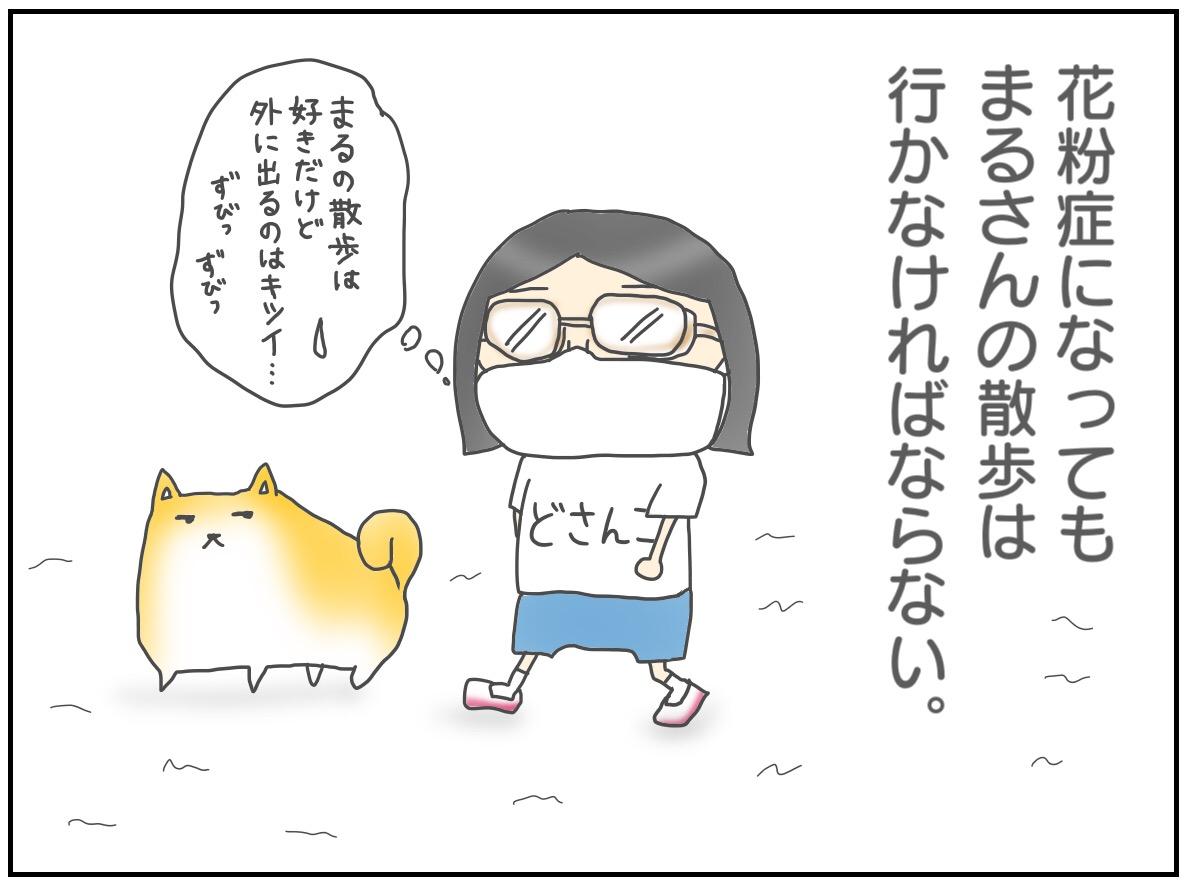 ③道産子の私が東京に住んで花粉症になったお話〜犬だって花粉症になる?編〜