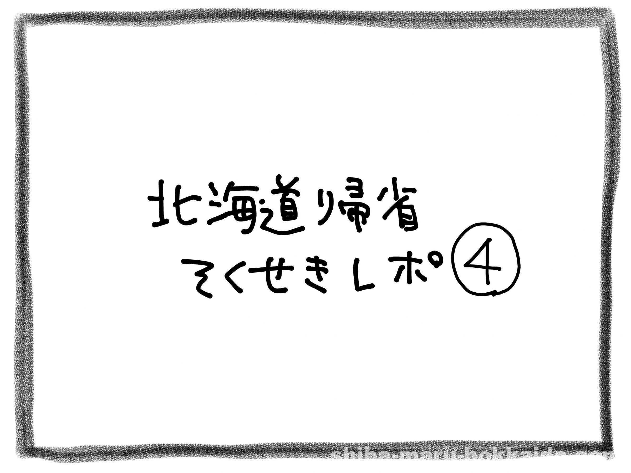 北海道帰省即席レポ④柴犬のヘアゴムを札幌で買った結果…