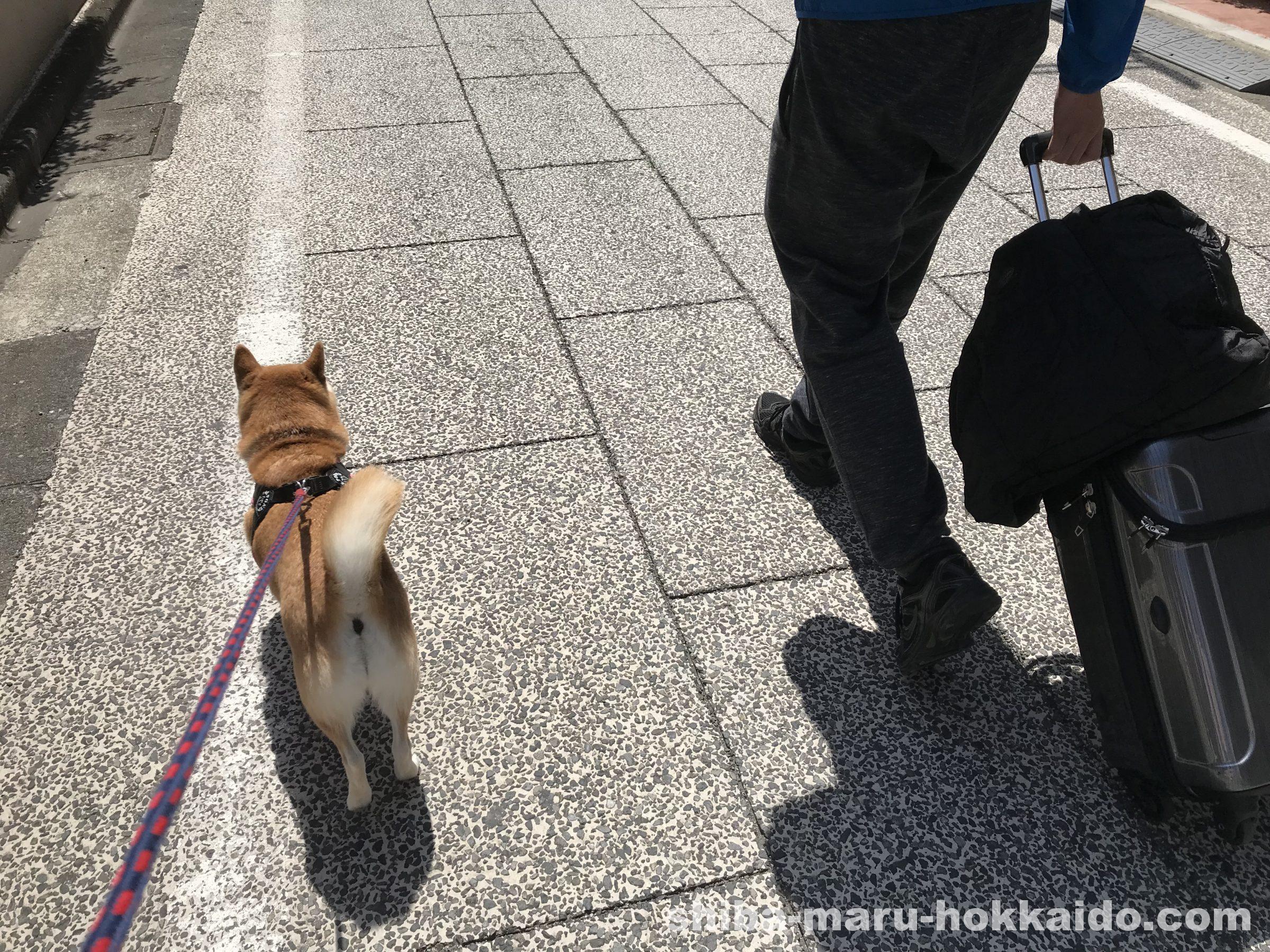 北海道への帰省初日からやらかす。