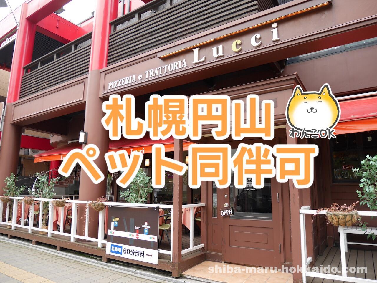 札幌円山で愛犬と本場ナポリピッツァが食べられるLucci(ルッチ)にいってきた!