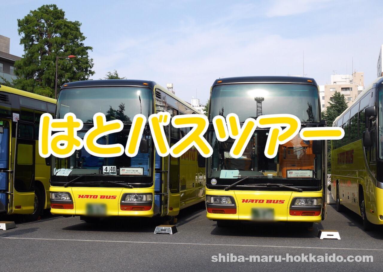 東京生活5年目にして初めて「はとバスツアー」に参加してみました!