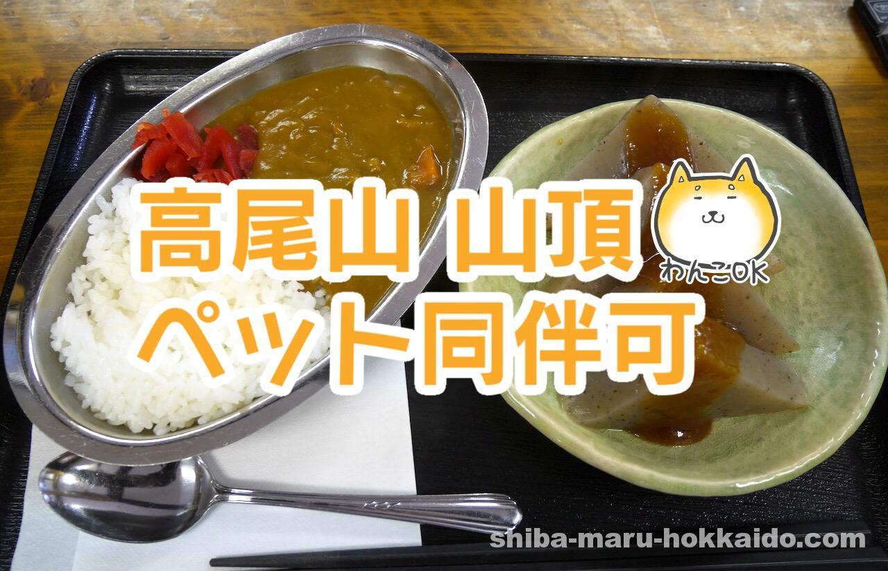 高尾山山頂のペット同伴可「やまびこ茶屋」でカレーを食べながら雨宿り!