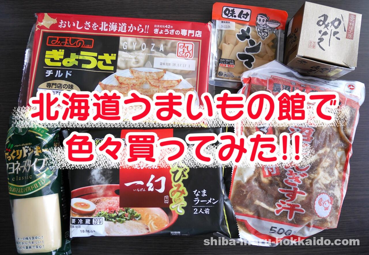 道産子の私が北海道うまいもの館で故郷を懐かしみながらこれ買ってみました特集!
