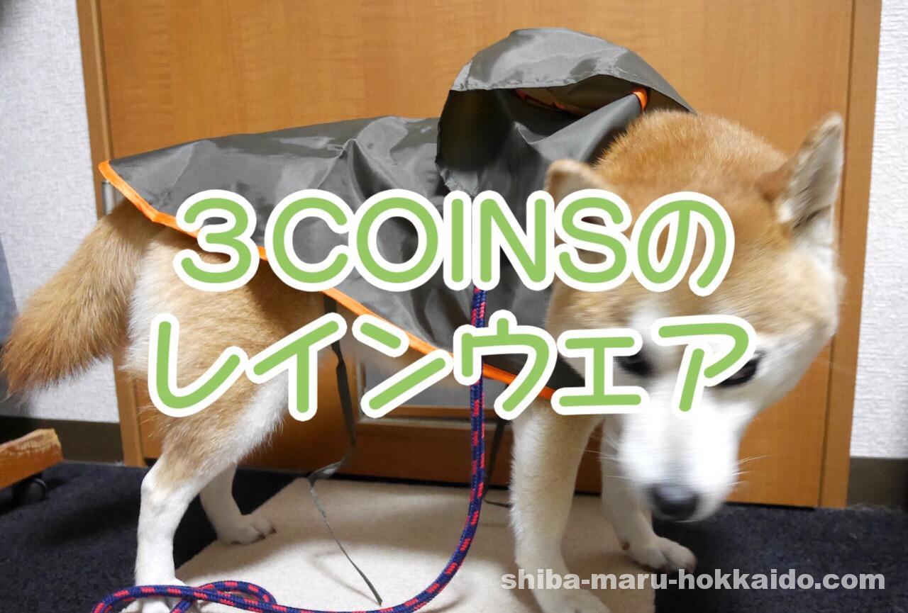 スリーコインズで買ったレインウェアを柴犬まるさんに着せてみたのはいいけれど…