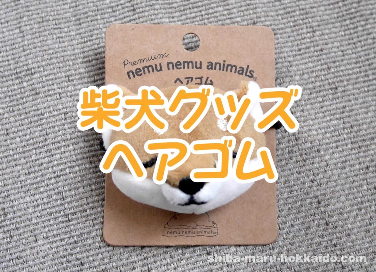 プレミアムねむねむシリーズ!柴犬コタロウのヘアゴムを買ったので自慢する!