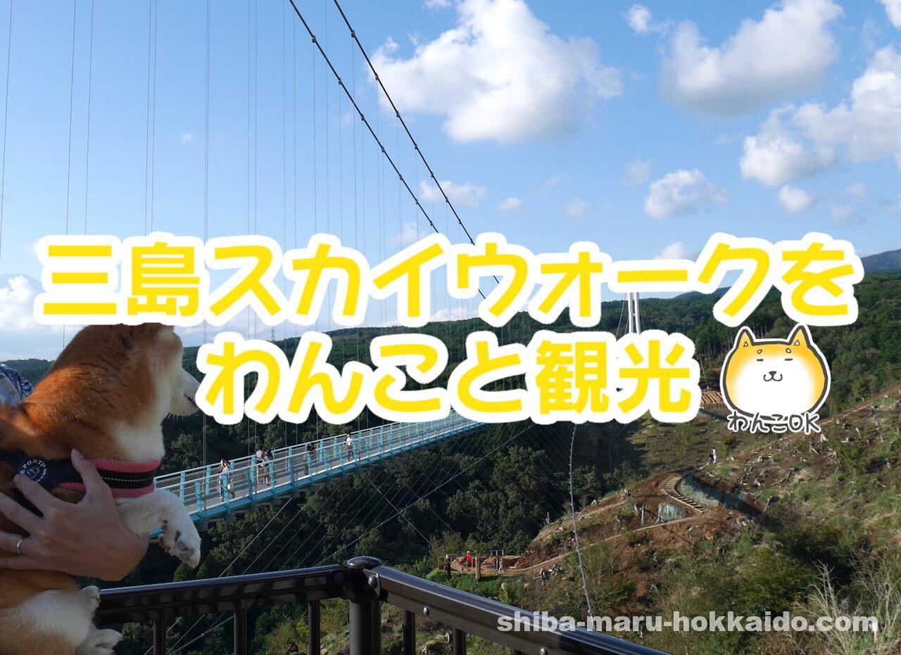 柴犬まると日本最長の吊り橋「三島スカイウォーク」にいってきました!