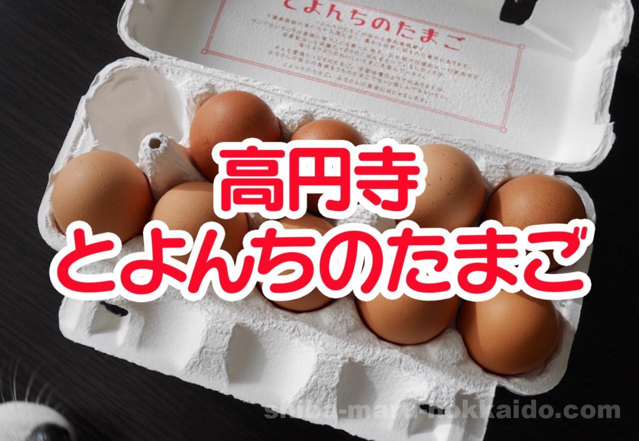 高円寺「とよんちのたまご」の濃厚卵とプリンが美味すぎたので語る!
