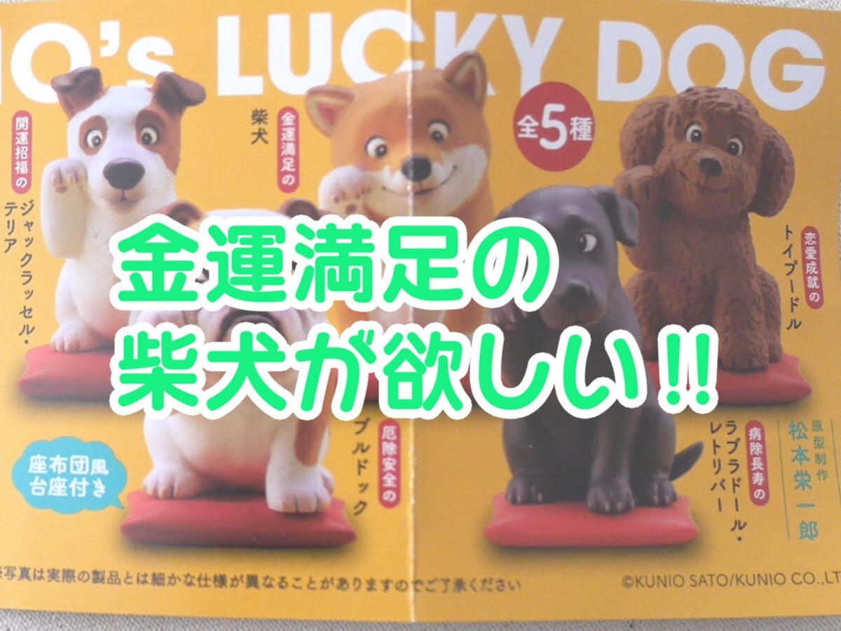 2019年に向けて「佐藤邦雄の招福犬」ガチャで柴犬をゲットしてやる!