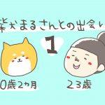 ①柴犬まるさんとの出会い〜柴犬を飼おうと思った経緯〜