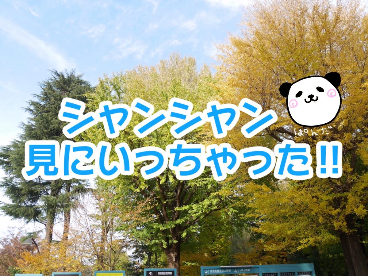 せっかく東京に住んでるし上野動物園のシャンシャンを見に行った結果