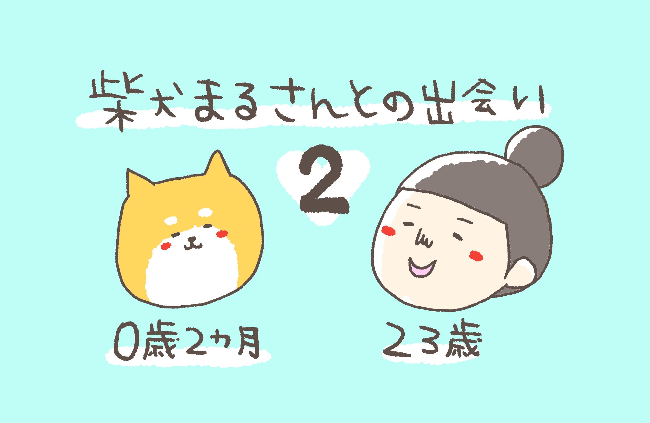②柴犬まるさんとの出会い〜半年に渡る柴犬探し〜