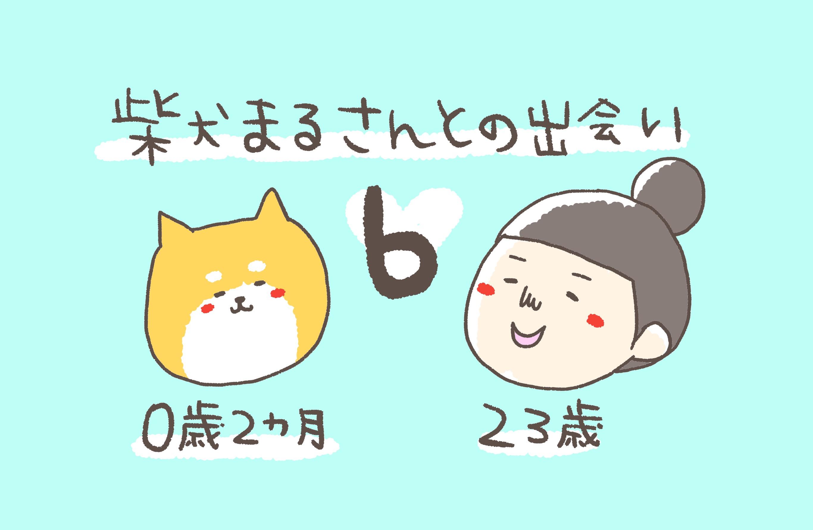 ⑥柴犬まるさんとの出会い〜手続きで名前の記入をするドキドキ感〜