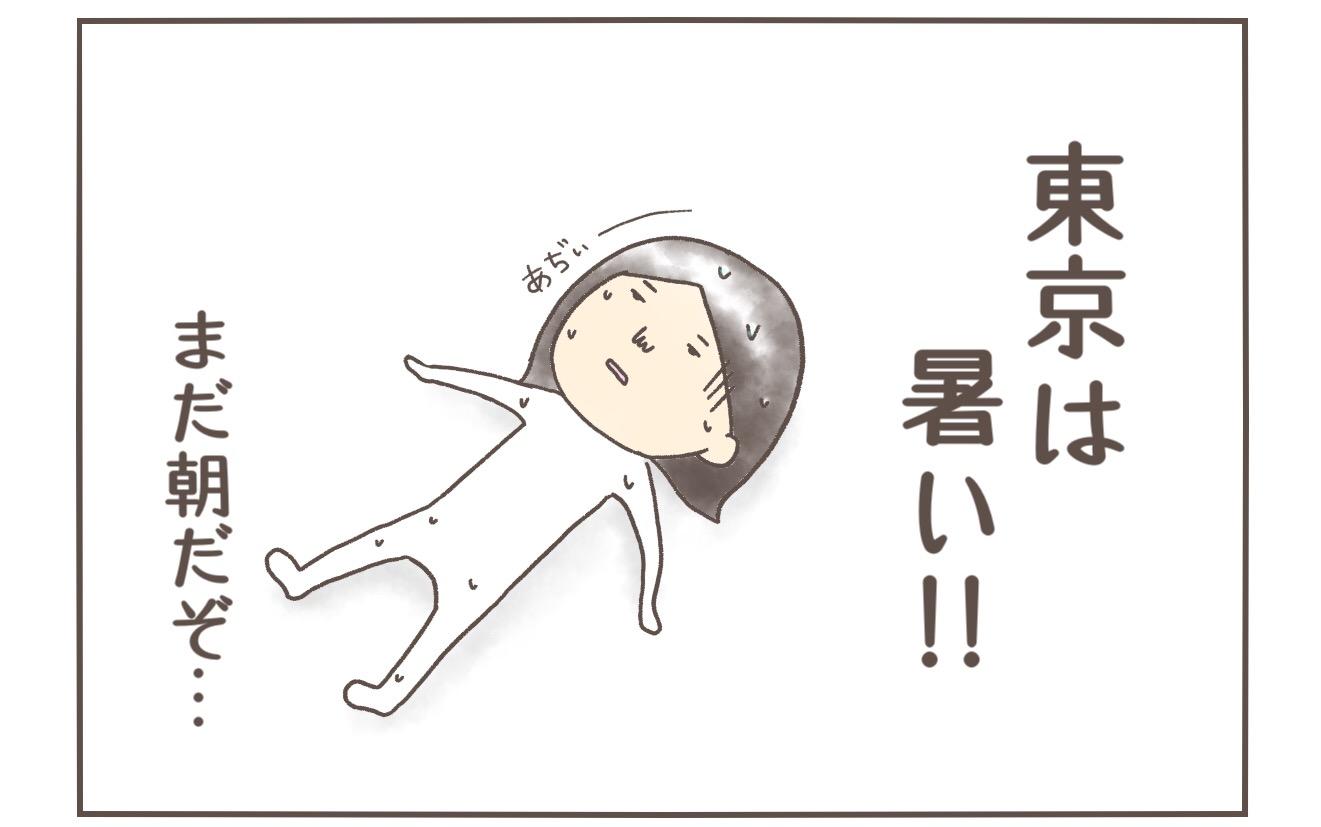 東京の梅雨は蒸し暑いがエアコンを付けるか毎年悩む私と柴犬まるの話