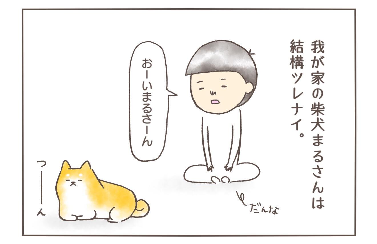 【柴犬4コマ】柴犬まるさんってこういうところあるよねって話