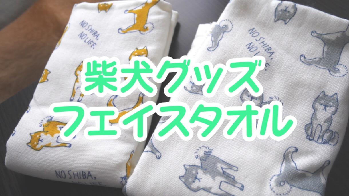 ミカヅキモモコで見つけた柴犬のフェイスタオルが可愛すぎたのでまるさんと撮ってみた