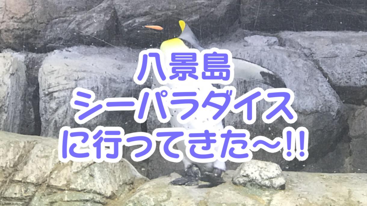 ペットも行ける!?八景島シーパラダイスでペンギンを触ってきました!