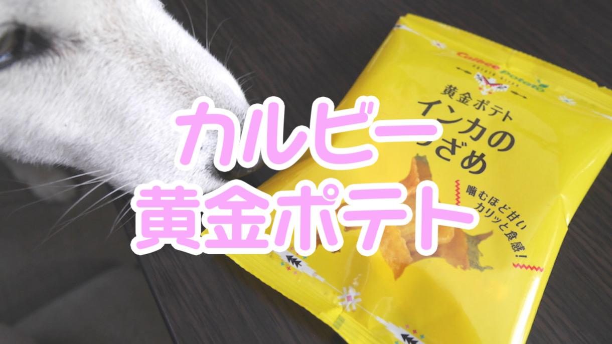 北海道のお土産!カルビー「黄金ポテトインカのめざめ」を食べてみた!