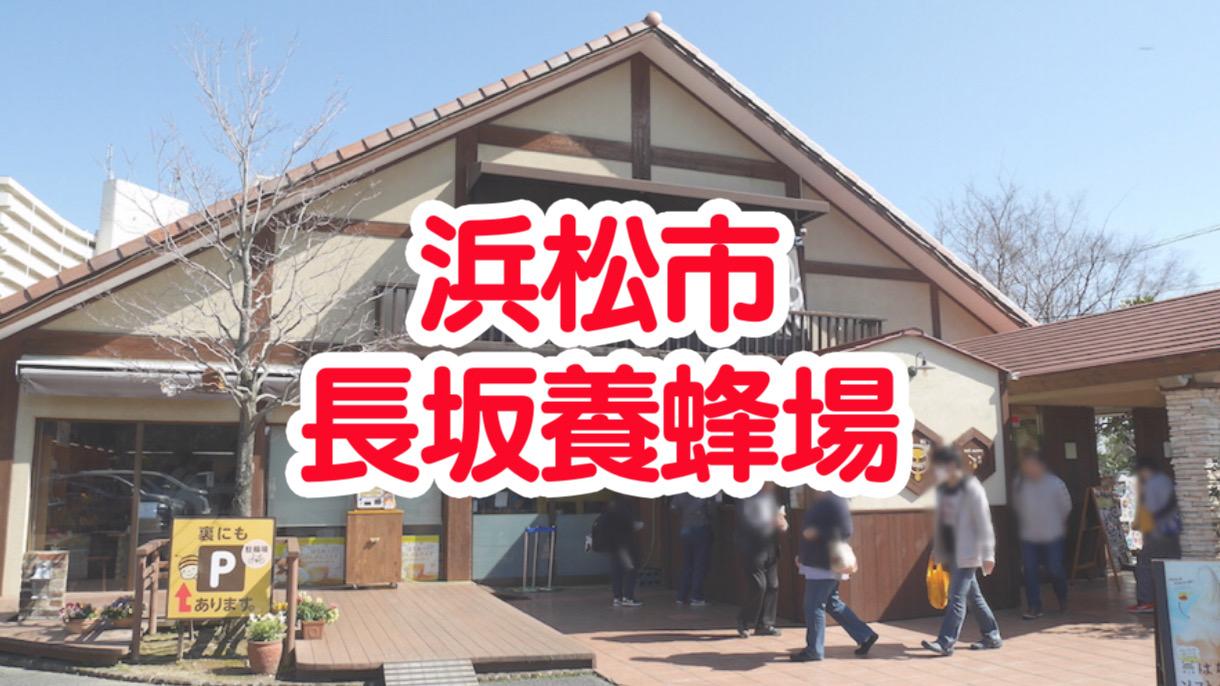 浜松市の長坂養蜂場ではちみつソフトクリームを食べてきました!