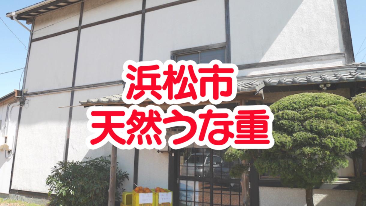 浜松に来たらうなぎが食べたい!「さくめ」の天然うな重が最高に美味しかった!