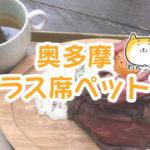 テラスで柴犬とお食事!奥多摩リバーサイドカフェawa にいってきました!