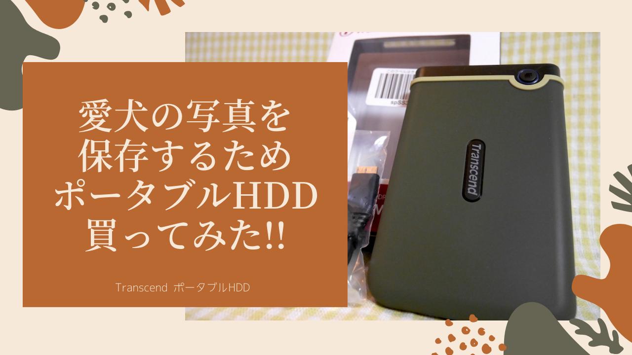 愛犬の写真データ保存のためにコンパクトなハードディスク買ってみた【Transcend ポータブルHDD】