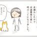 【柴犬4コマ】水道業者がきた時の柴犬まるさんの対応が…な話
